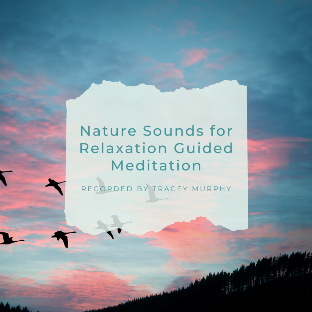 Nature Sounds for Relaxation Guided Meditation